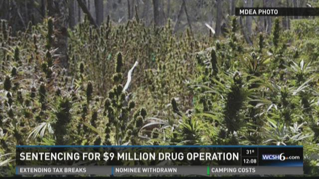 Sentencing for $9 million drug operation