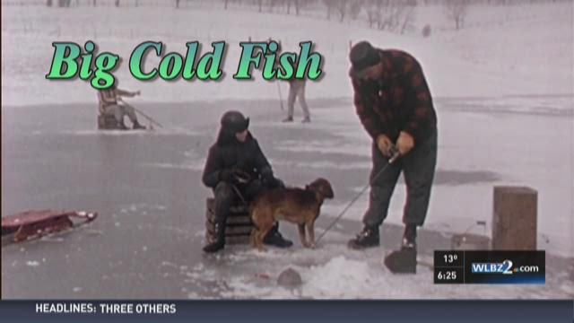 Big Cold Fish 020616